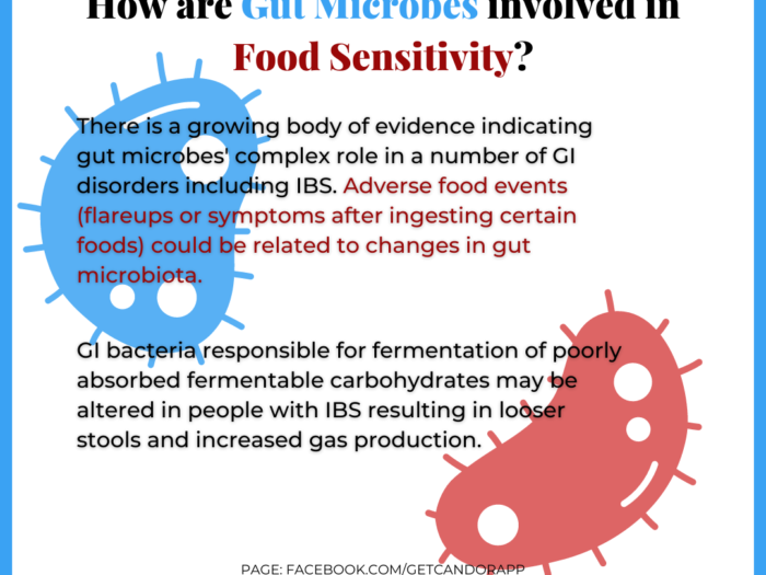 Gut Microbes involvement in Food Sensitivity